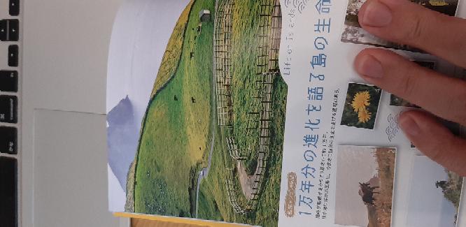 隠岐の島のガイドブックのここの部分って、何島のどの辺りになりますか?