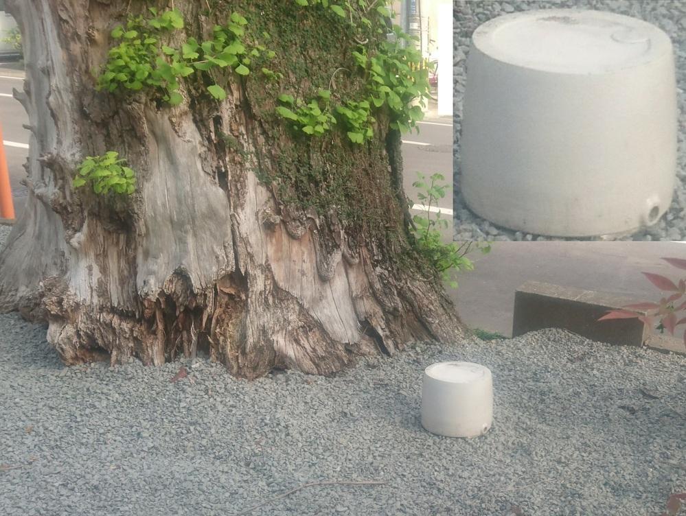このモノの正体をご存知の方 これは何の為にこの老木の際に 置かれているのかもう何十年も 置かれていますが未だに何なの かがわかりません。