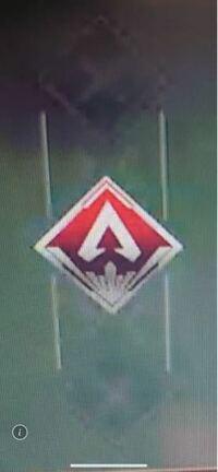 先程apexで見たことないバッジを見かけたのですが、これは何のバッジですか?