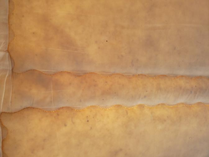 フトンのカビ!? 敷布団を干したときに太陽光に透けて黒い大小さまざまな点?が見つかりました。表面上は白いです。 これは布団のカビや虫の死骸でしょうか。 ニトリで購入し4年程度、除湿シートを置きな...
