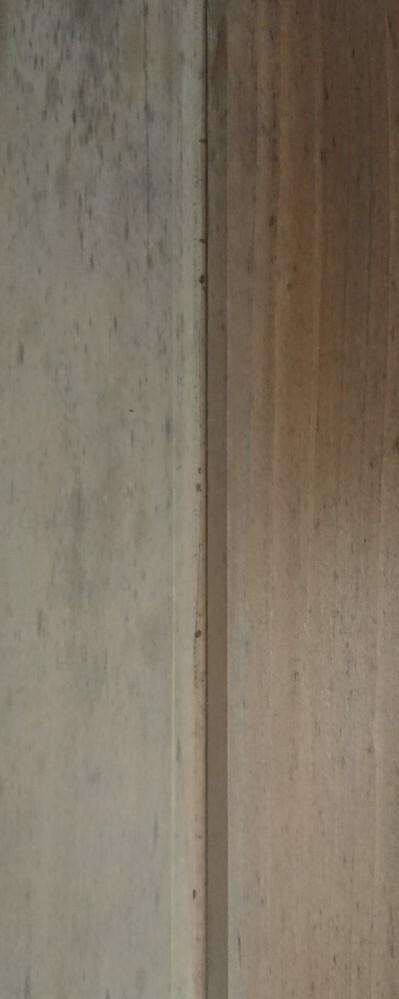※画像あり お風呂の壁に虫が発生しています。 檜の壁なのですが、毎年小さな虫が発生してしまいます。何の虫でしょうか。 小さくて見辛いのですが、写真の木の隙間にいる黒いぶつぶつみたいなやつです。飛んだりはしません。基本じっとしていてたまに動いてます