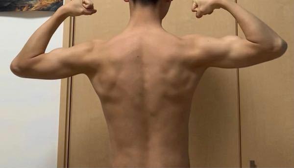 背筋の筋トレをしたいのですが、どこの筋肉が特に無いのかなどを知りたいです。 するべき筋トレの箇所とその方法(ダンベルはあります。)について教えて下さい。