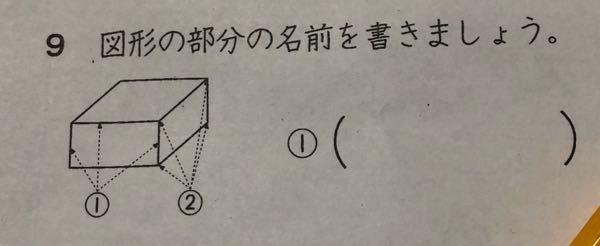 小学校2年生の算数の問題です。 答えを教えてください。