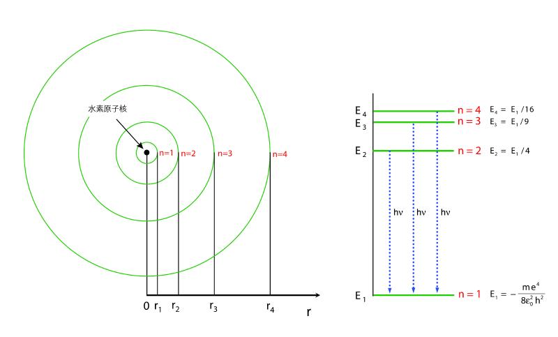 初歩的な原子核の質問です。 水素の軌道電子エネルギー準位は飛び飛びの値を取ることしかできないと習いました。それは数式的にはn=自然数なので難しい式に代入すると連続の値が出ないことからという理解...
