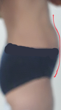 女です。私は痩せています。ですが下腹だけぽっこり出てしまいます…。 筋肉?がないってのもないです。私はスポーツをやっていて普通の人の倍はいろんな筋トレしてます。なぜなのでしょう…?(;;) いつも便秘気味...