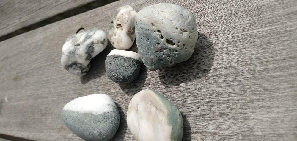 石の白い部分は何でしょうか? どのようにできた石(岩石?) なのでしょうか? 砂浜の石です。 分かる方、ご説明を宜しくお願いします。