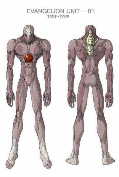 エヴァンゲリオンの本体はこれなんですか? 中身は機械じゃなくて人間の筋肉みたいですね。