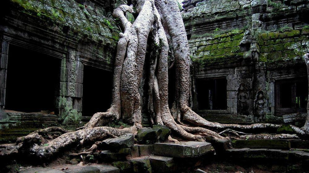 ここは東南アジアのどこかの寺院内っぽい感じがするのですがどこだかわかりますか?