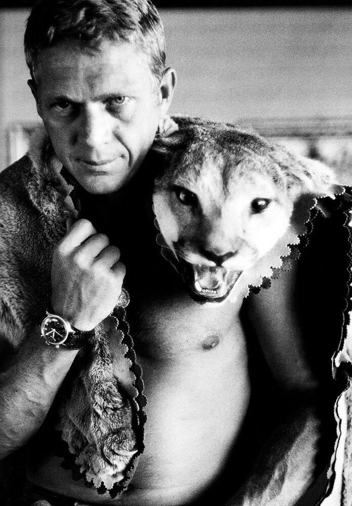 スティーヴ・マックイーンの肩に乗ってる、この『動物』は、 何だと思いますか? 動物にお詳しい方、お願いします。