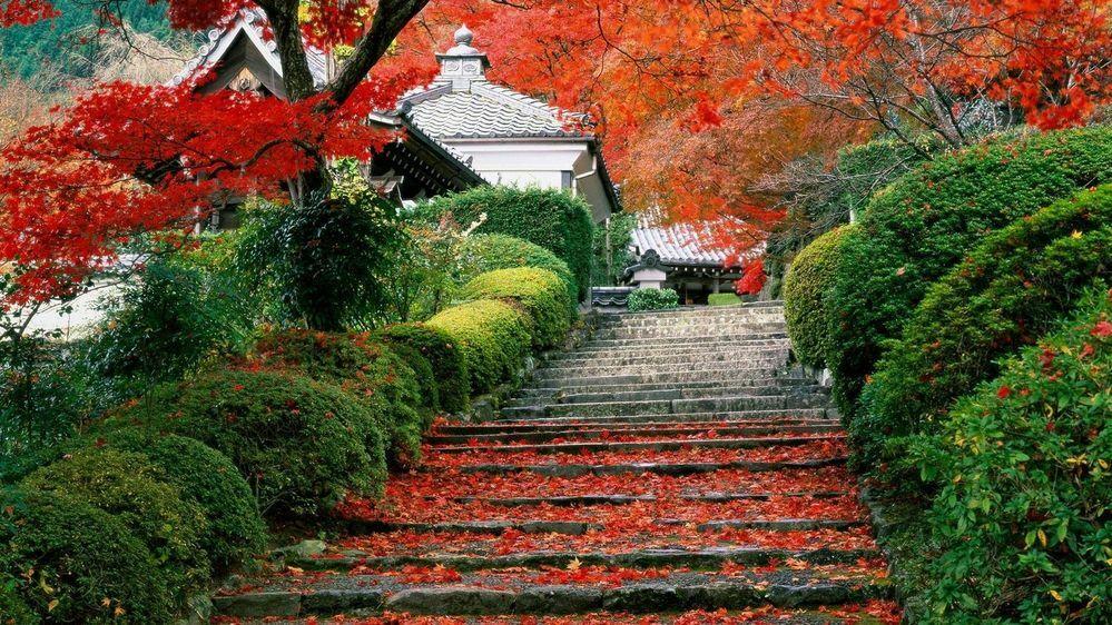 ここは京都の「善峯寺」でしょうか?