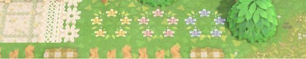 あつまれどうぶつの森のマイデザインで画像のお花のマイデザインを描いた人が誰かわかる人いますか?