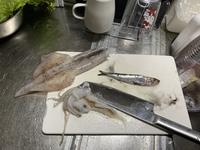 これは何という魚でしょうか?食べられますか?イカの中から出てきました。こんな大きいの丸呑みなんてすっごくビックリしました。