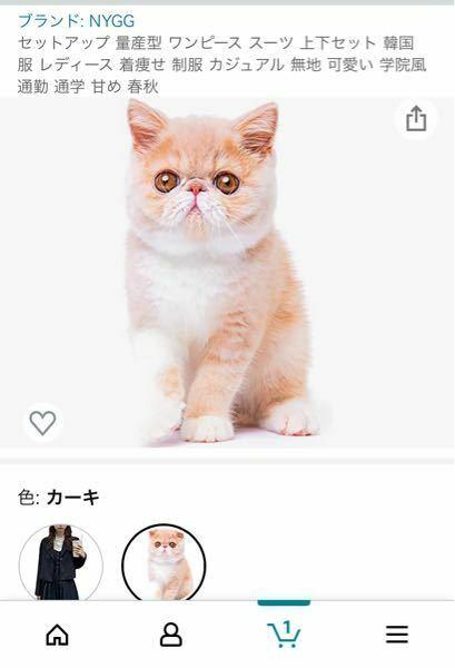 Amazonで服を買いました。 買った時はその服の画像が掲載されていたのですが、次の日見てみると服の画像が猫の画像になっていました。 詐欺の危険性はありますでしょうか? Amazonに詳しい方などわかる方いらっしゃいましたらご回答お願いします。
