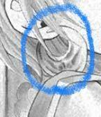 こうゆうピアスをよく漫画で見るんですけど、名前って分かりますか? というか、そもそもこうゆうピアスは存在しますか?
