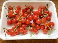 家の庭の桜にさくらんぼがなっているのですが、これは食べられるのでしょうか?