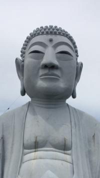 鎌倉大仏ですか?