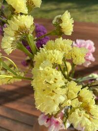 この黄色いお花の名前はなんですか?? 花束に入っていてかわいいなと思ったのでぜひ名前をおしえていただきたいです!!