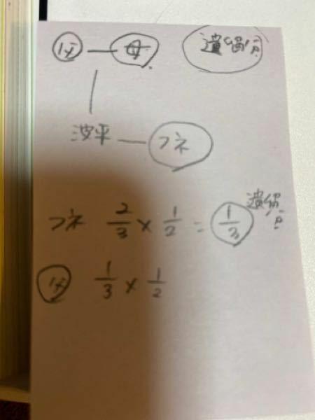 遺留分の計算で写真の場合 父は3分の1かける3分の1かける2分の1ですか?