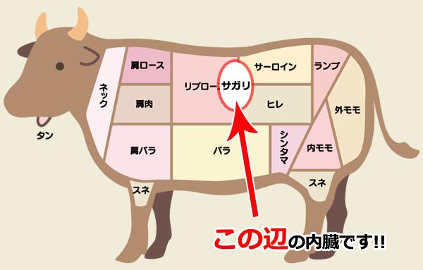 小池都知事は牛のサガリは好きですか?
