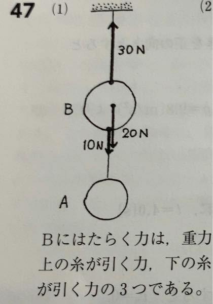 物理基礎 力のつりあい 重さ10NのボールAと重さ20NのボールBがあります。 Bにはたらいている力を全て書き込め ただし糸は軽いものとする という問題です。下向きに10Nの力が入っていますがこれはボールAの重さということでしょうか?