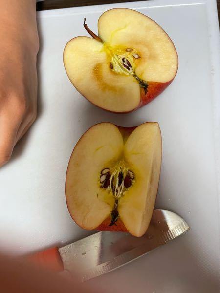 コイン50枚渡します。急ぎです。 このリンゴは蜜ですか? それとも腐ってますか?