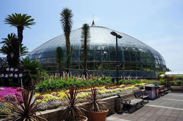下の写真通りの植物園ドームぐらいなら、幾らかかりますか?
