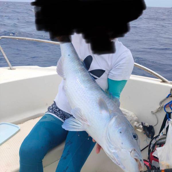 先程釣れましたが何の魚かわかりません。 沖縄の海で釣れました。 名前を教えて下さい。 よろしくお願いします。