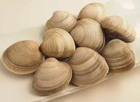 ホンビノス貝は大アサリみたく砂が入ってたりするのですか?