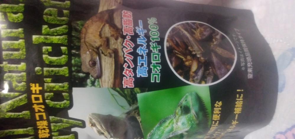 これってニホントカゲも食べますか?