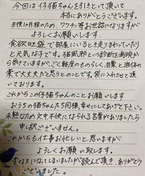 猫ちゃんを譲渡することになり 父の知り合いのため手紙を書こうと思っていて、 この文章はやっぱり変でしょうか?