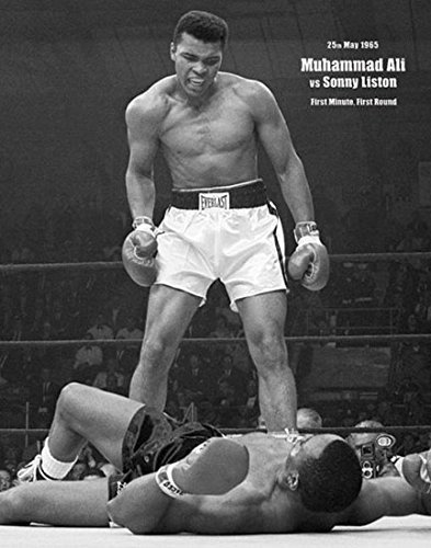 偉大なヘビー級ボクサーといえば誰をイメージしますか? ↓ 「ガルベストンの巨人」ジャック・ジョンソン 「拳聖」ジャック・デンプシー 「褐色の爆撃機」ジョー・ルイス 「シンシナティ・コブラ」イザード・チャールズ 「ブロックトンの高性能爆弾」ロッキー・マルシアノ 「史上最強」ソニー・リストン 「ホラ吹きクレイ」モハメド・アリ 「スモーキン」ジョー・フレージャー 「象をも倒す」ジョージ・フォアマン 「イーストンの暗殺者」ラリー・ホームズ 「鉄人」マイク・タイソン