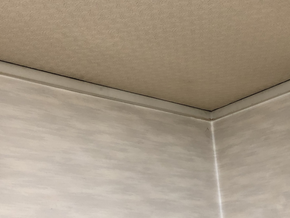 築30年ほどの一戸建て4階建てに住んでいます。 最近3階に雨漏りがあり気になって各部屋の天井を見てると黒くなっているような感じに見えました。 これは雨漏りでしょうか? 今は雨が漏れてきているとか言う現象はないのです。