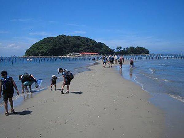 干潮になると陸続きになる島は全国的に見ても珍しいですか?ましてや大都市がある県でそれがあるのは愛知県(前島)と神奈川県(江ノ島)くらいですか? ※写真は前島です。