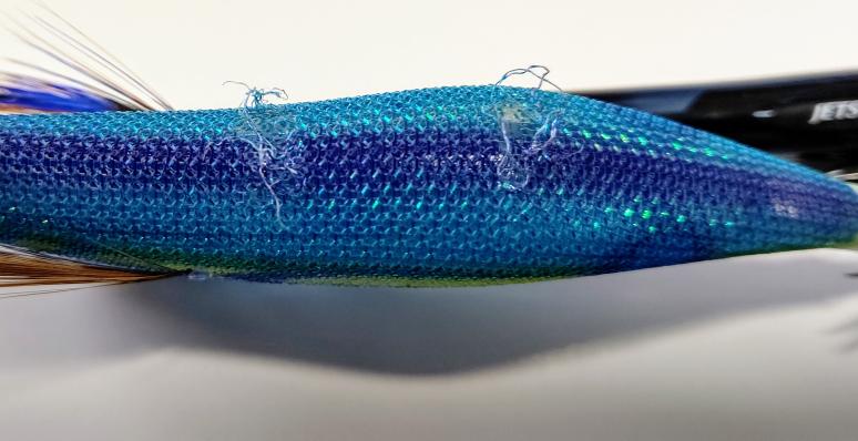 今日アオリイカが1杯釣れたのですがエギの背中に2ヵ所破れがありました。 これって噛み跡でしょうか?