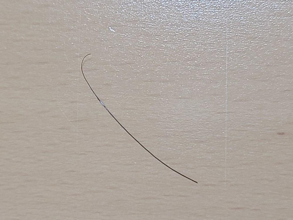 私の髪の毛より太い毛のようなものが落ちていたのですが、これはゴキブリの触角ですか?