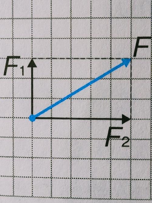 写真のように、合力Fを書くときの途中の線は点線で書かなければならないのですか?
