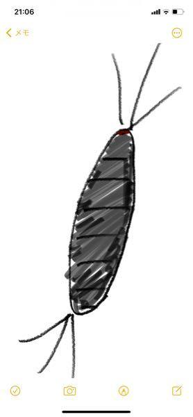 部屋によくいる虫の名前が知りたいです。 どなたかご存知の方いらっしゃいませんか? 細長くて灰色の体、両先端から3本ずつ毛が生えています。 異様に素早いですが、飛んだりはしません。 サイズはかなり個体差がありますが、 どれだけ大きくても親指に乗せられるくらいです。 本体を潰すと銀色でした。
