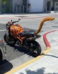 このバイクはイケてるんでしょうか?一応はドカティみたいなんですけど。