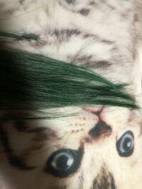 この髪色にビューティーラボナチュラルブラウン髪色戻しを使ったら茶髪になりますかね? どういう感じになるかわかる方いたら教えてください エンシェールズカラーバターオーシャンブルーを 使ったら思いの外色が入ってしまいました。(ρ_;)