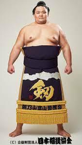 キャバクラ狂いの朝乃山は虚偽の報告は解雇に相当するのではないでしょうか? 大関朝乃山(27=高砂)が、日本相撲協会の新型コロナウイルス対策のガイドラインに違反したことが19日、分かった。文春オンラインに、夏場所2日前などのキャバクラ通いが報じられた。日本相撲協会の事情聴取に対し、当初は事実無根を主張していたが、夏場所11日目の打ち出し後に一転。再度の聴取に対し、事実を認めた。虚偽報告をしてい...