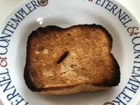 アラジングラファイトトースターですが 極上のトーストをと書いてある割に  パンが焦げやすいと思いませんか ︎ 何だかなあと思います  冷凍のパンを 3分トーストしたパンです  また焦げました 2分位がベスト?でしょうか
