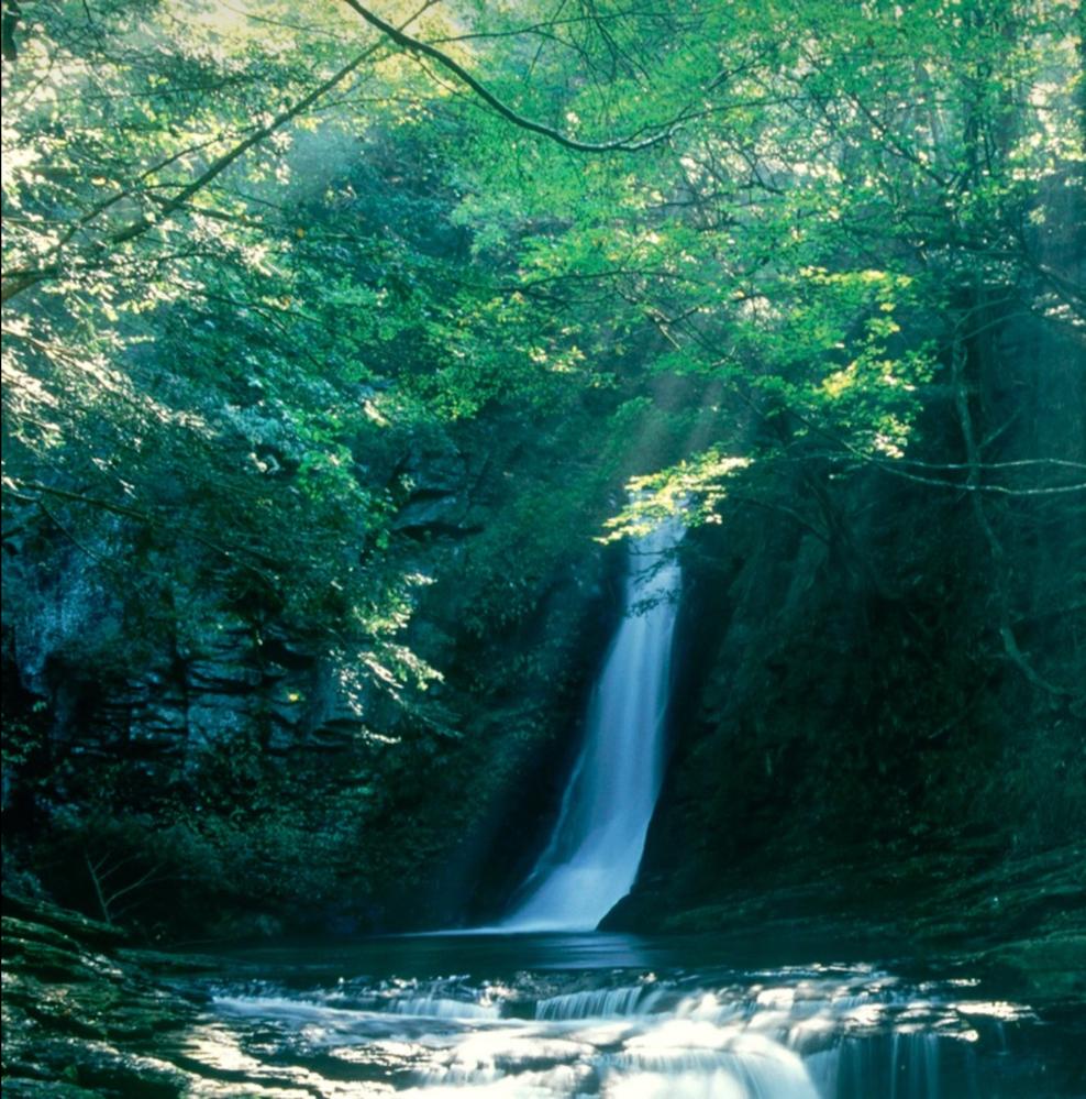 この滝がどこにあるか、ご存知の方はいませんか? 一度行ってみたいのですが、探してもわかりません。 よろしくお願いします。