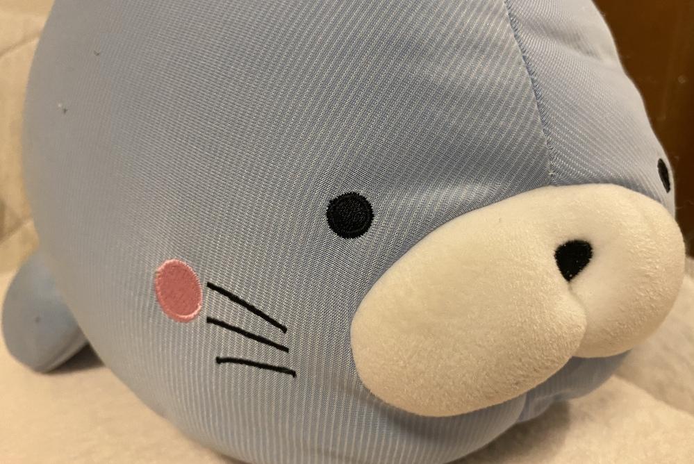 2年前から愛用している抱き枕ですが、ぼのぼのに似ていると思いませんか?(≡・ω・≡)