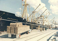 なぜこの船(Sargodha エンジン 8750馬力)の航海速力は17ノットなの❓