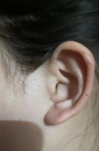 福耳で上向きの耳たぶへのピアスについての質問です。 私の耳は横から見ると丸まったような、そして耳たぶが上向きぎみです。また、耳たぶも7mmくらいと厚めです。 ピアスを開けたいと考えているのですが、このような耳だと似合わないでしょうか。 また、もし大丈夫だとしたらピアス穴の位置などアドバイスを頂きたいです。