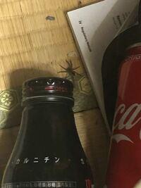 画質がかなり悪いのですが、この蜘蛛さんはどんな種類か分かりますか? 駆除していいものかわからなくて…目立った柄は無さそうで、黒色です。大きさは2センチぐらいでした。