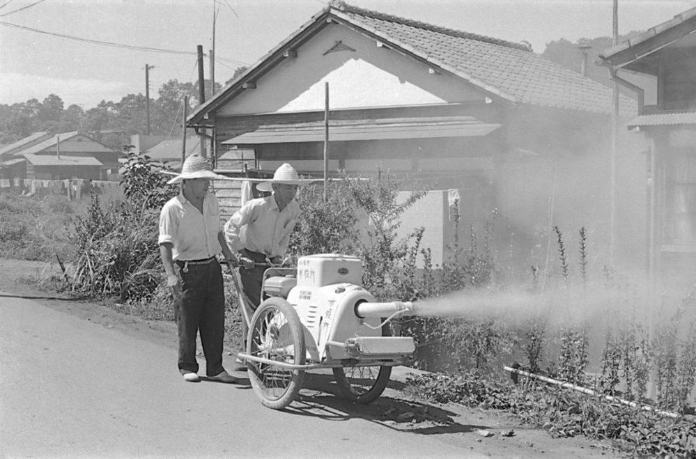 昭和の感染症対策は徹底していましたか?