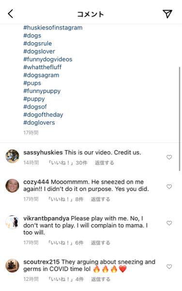 ここに書いてあるコメントで、 「This is our video.Credit us.」 っていう文章があるのですが、これはどういうニュアンスのコメントですか?うまく日本語に訳せません。 ちなみにこのコメントは、2匹のハスキー(犬)が互いに遠吠えしている動画で、Someone please translate と書かれている投稿に対してのコメントです。 英語に長けている方よろしくお願いします。
