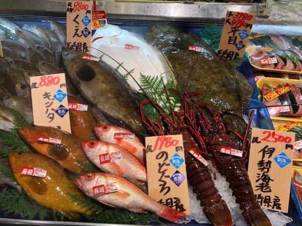 魚市場のアジとの違い 先日、船でアジ釣りに行ったのですが、釣れたアジがあんまり美味しくなかったです。 ライトタックルで、水深20〜30m、クーラーBOXでしっかり冷やしたのですが、脂の乗りがイマイチでした。。 ●美味しいアジが食べたいなら、素直に魚市場に行って買う方が賢明でしょうか? プロの漁師は、脂が乗った魚が集まりやすい場所で漁をするのでしょうか?