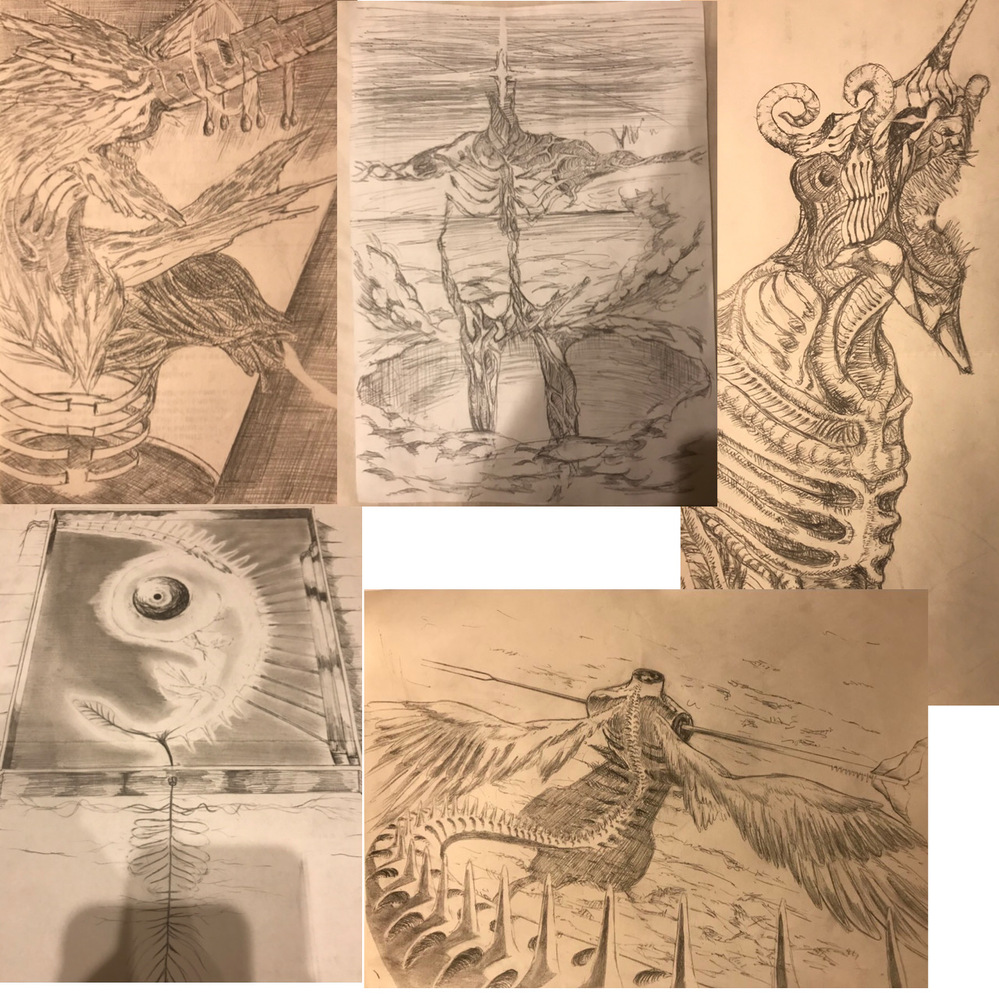 漫画家志望の高校1年生です。 漫画を描き始めようと思っているのですが、今まで全く漫画を描いたことがありません。 なので何から始めればいいのか、まず何をできるようにするべきかが何一つ分かりません。 iPadとApple pencilがあり、デジタルで描ける環境もあります。 趣味で怪物などのアナログの絵を描いていて、アナログでは下のような画力です。適当にいっぱい貼りました。 経験のある方など回答よろしくお願いします。